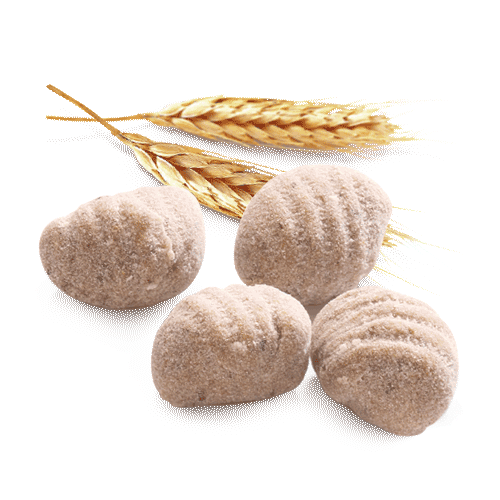 gnocchi ai cereali