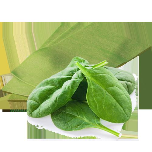 eierteig-grün